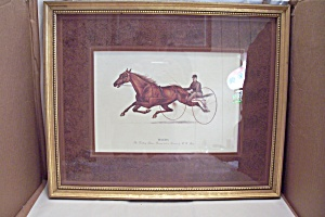MAUD S The Trotting Queen Art Print (Image1)