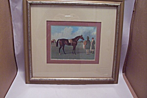 Framed Classic English Horse Art Print