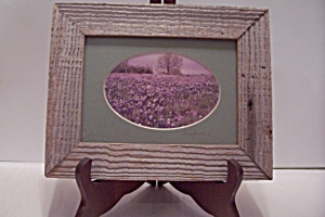 Oval Wildflower Photograph In Barn Wood Frame