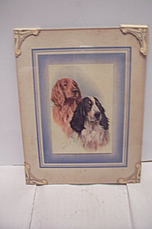 Pair Of Bird Dogs Art Print