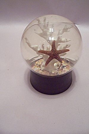 White Coral & Starfish Glass Dome Paperweight