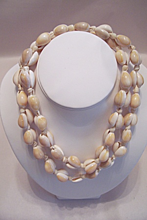Vintage Sea Shell Necklace (Image1)