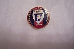 Click here to enlarge image and see more about item FAC00595: TMRA 17 Year Pin