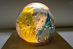 Blue, White, & Yellow Floral Design Paperweight