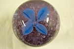 "Beautiful artist handmade art glass paperweight with a cased blue floral design.  2-1/2 inches in diameter and 2-1/2 inches tall.  Made in the Ohio River Glass region and signed with ""B"" on ..."