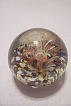 Abstract Orange & White Floral Design Paperweight
