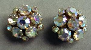 Elegant Weiss Rhinestone Earrings (Image1)