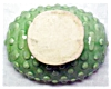 Click to view larger image of Green Pottery Planter Bowl Bubble Design (Image3)