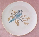 Click to view larger image of Crookville Blue Jay Bird Plate Iva-Lure 8 inch (Image1)