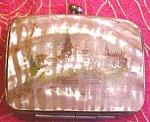 Click here to enlarge image and see more about item Van988: Mother of Pearl Coin Purse 1901 Worlds Fair
