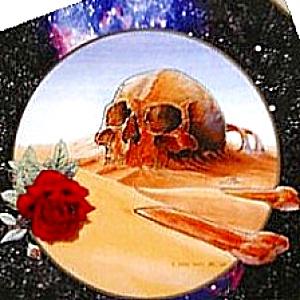 EUROPE '81 1981 GRATEFUL DEAD STANLEY MOUSE GRATEFUL DEAD Deadheads Deadhead Greatful (Image1)
