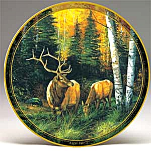 Regal Pair - Big Game Series Of Elks Elk Artist Trevor Swanson Hunting