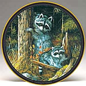 Looking For Trouble Little Mischief Makers Series Trevor V. Swanson 2 raccoons forest (Image1)