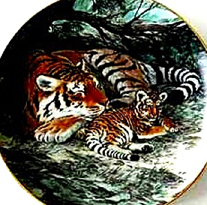 Siberian Tiger Last of Their Kind The Endangered Species W. Nelson BradEx 84-G20-15.8 (Image1)