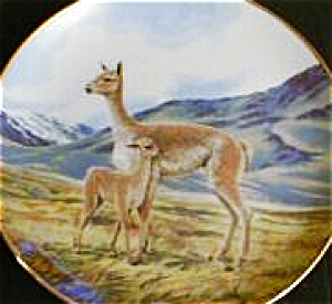 Vicuna Last of Their Kind The Endangered Species Will Nelson BradEx 84-G20-15.9 Llama (Image1)