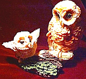 NESTING INSTINCTS OWLS : LEARNING TO FLY MOM (Image1)
