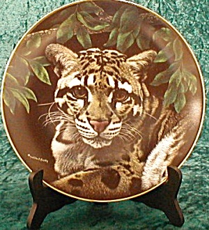 ASIAN CLOUDED LEOPARD - NATURE'S MAJESTIC CAT (Image1)