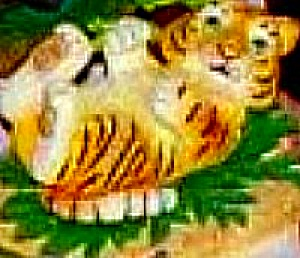 Protect Nature's Innocents Bengal Tiger Endangered Species Animal Hamilton Manning Bs (Image1)