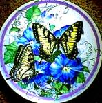 Click here to enlarge image and see more about item BUTTER5: '87 TIGER SWALLOWTAIL:BUTTERFLY GARDEN/SWEANY