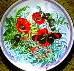 Click here to enlarge image and see more about item BUTTER6: '87 CRIMSON PATCHED LONGWING:BUTTERFLY GARDEN