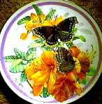 Click here to enlarge image and see more about item BUTTER7: 1988 MORNING CLOAK  BUTTERFLY GARDEN PAUL J. SWEANY