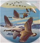 Click here to enlarge image and see more about item CANADA5: Southward Bound :WINGS UPON WIND DOMINION China/BRADFORD 8-D52-1.5 Canada Geese Pentz