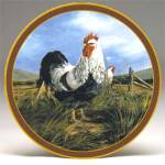 Click here to enlarge image and see more about item ISP7: Kings of Roost  Silver Penciled Rock Rooster Hen Trevor V Swanson Farm Animal Islandi