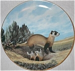 Click here to enlarge image and see more about item LK7: Black-Footed Ferret Last of Their Kind : Endangered Species Nelson BradEx 84-G20-15.7