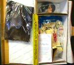 Click to view larger image of Noble American Indian Women FALLING STAR David Wright Native Doll MIB Historical 1997 (Image6)