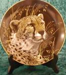 Click here to enlarge image and see more about item NMC7: AFRICAN CHEETAH - NATURE'S MAJESTIC CATS - M. Richter
