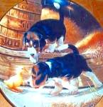 Click here to enlarge image and see more about item PUP4: PUPPY PLAYTIME : GETTING ACQUAINTED BEAGLES Puppies Artist Jim Lamb River Shore