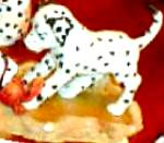 Click to view larger image of Spot Sees A Crab DALMATION Jacqueline B.Smith (Image1)