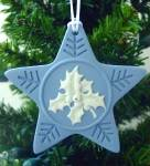 Click here to enlarge image and see more about item WEDGWOODORN1: Wedgwood Blue Jasper 2004 HOLLY & IVY Annual Christmas Star Ornament MIOB 51403008800
