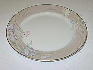 Mikasa Charisma Beige L9048 Salad Plate (Image1)