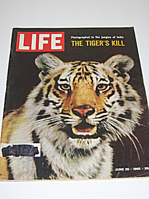 Life Magazine June 25 1965 The Tiger's Kill & Gemini 4