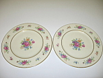Click here to enlarge image and see more about item CDLLR02: Lenox Lenox Rose J-300 2 Salad Plates