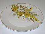 Mikasa Luan Focus Shape 2014W Dinner Plate