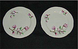 Homer Laughlin Bread and Butter Plates 2 (Image1)
