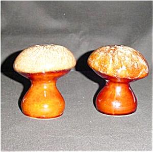 USA Mushroom Salt and Pepper Set (Image1)