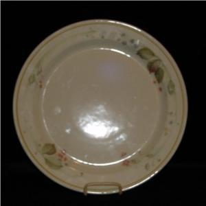 Steelite Dinner Plate (Image1)