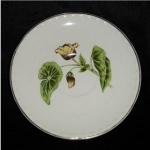 Click here to enlarge image and see more about item 1118ss: Crooksville Thematie Saucer