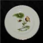 Click here to enlarge image and see more about item 305: Crooksville Thematie Bread & Butter Plate