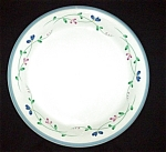 Click here to enlarge image and see more about item 837s: Allegro Hearthside Dinner Plate