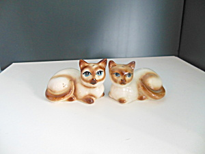 Vintage Set Of Siamese Cat Salt & Pepper Shaker
