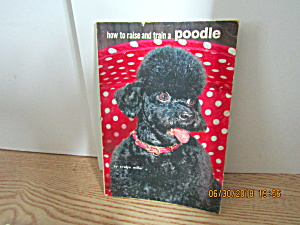 How To Raise And Train A Poodle