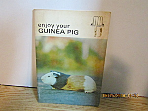 Enjoy Your Guinea Pigs