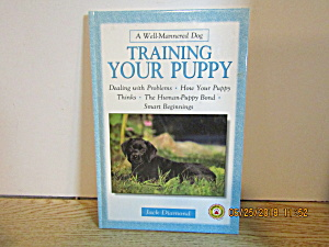 A Well Mannered Dog Training Your Puppy