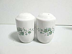 Jay Imports Callaway Ivy Stovetop Salt And Pepper Set