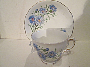 Royal Vale Bone China Cup & Saucer Set