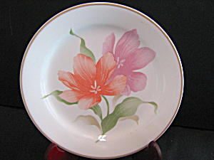 Vintage Corelle Pacifica Dinner Plate